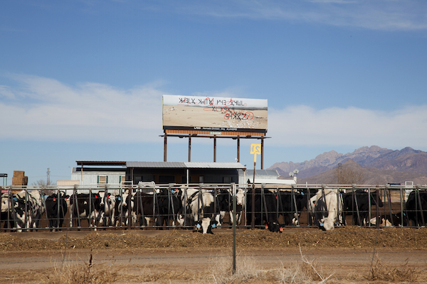 """Daniel R. Small, """"Pending Cipher for the Open Present,"""" 10 billboards, Las Cruces, NM, 2015."""