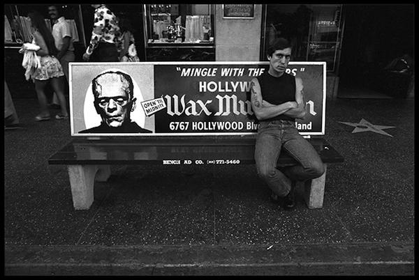 Bus Bench #1, Frankenstein