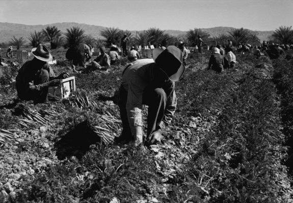 A Eulogy for a Delano Farmworker