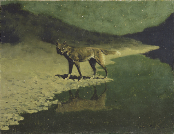 Moonlight, Wolf, ca. 1909, by Frederick Remington. Addison Gallery of American Art, Phillips Academy, Andover, Massachusetts; Gift of the members of the Phillips Academy Board of Trustees.
