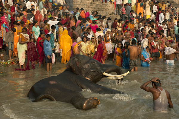 Worshippers at the River Ganga during the Sonepur Fair. Sonepur, Bihar.