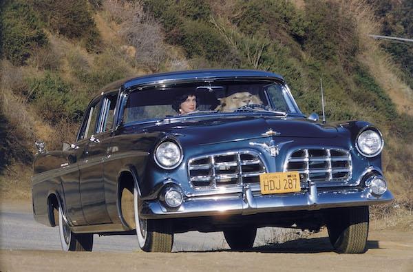 """Elliott Erwitt, """"Lion in a Car,"""" 1956"""