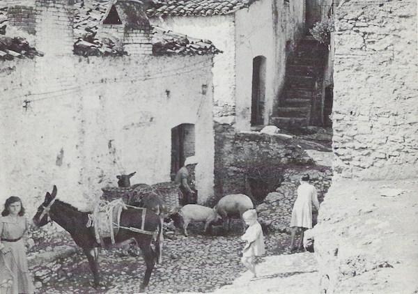 Chiaromonte in 1954-1955.