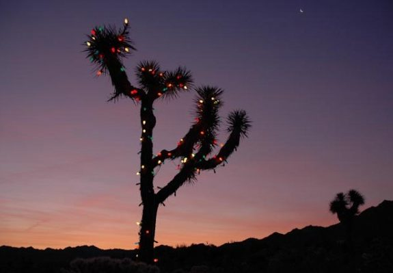 """The Gift,"" an L.A. Christmas Story by Alix Ohlin"