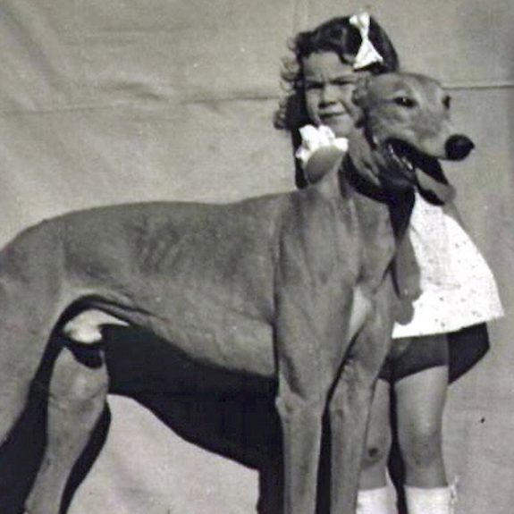 How My Parents' Wartime Gamble on Greyhounds Paid off with an Idyllic Life on the Road
