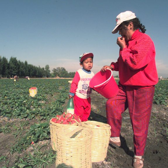 If You Want Strawberry Fields Forever, You Need Migrant Labor