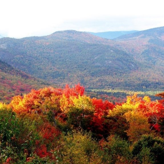 What Leaf Peeping in New England Taught Me About the Meaning of Autumn
