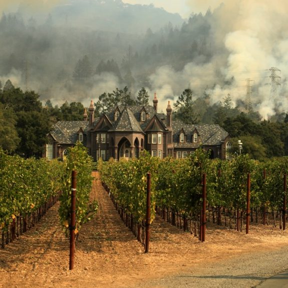 All California Is Wine Country–and the Wildfires Make It More So